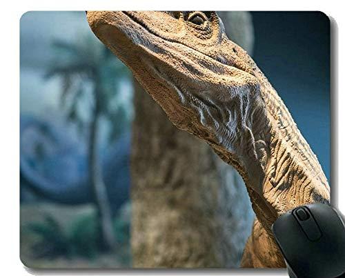 Mausunterlage mit Sperrkante, glückliche Dinosaurier-Dinosaurier-personalisierte Rechteck-Spiel-Mausunterlagen