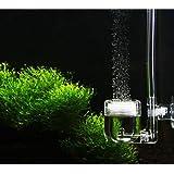 En U DIY 4 en 1-Co2 Diffuseur pour le système de Co2 DIY Clapet Bubble contre planté aquarium
