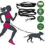 barf-alarm Joggingleine Hunde mit Bauchgurt inkl Tasche – 130cm Reflektierende Freihandleine – Taille Hundeleine Freihändig Für das Laufen und Joggen