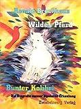 Wildes Pferd - bunter Kolibri: Die Biografie meiner bipolaren Erkankung