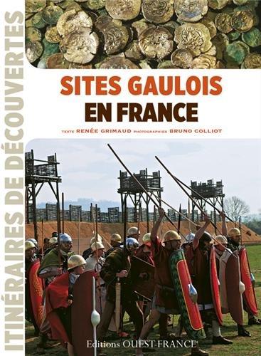 sites-gaulois-en-france