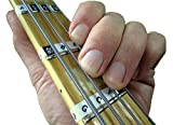 Fretnotes Aufkleber für Bassgitarre, 4-Saiten Rechts-Handed Griffbrett Notizen (13 Etiketten) mit Online-Lernen Aids