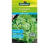 Dehner Gemüse-Saatgut, Kopfsalat