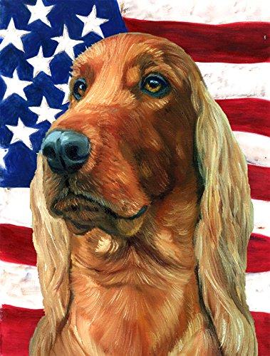 Caroline 's Treasures lh9541gf Irish Setter USA patriotische amerikanische Flagge, klein, multicolor (Multicolor Amerikanische Flagge)