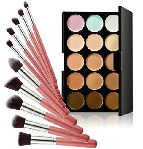 Timesong professionnel 10 pcs Cosmétique Lot de pinceaux de maquillage + 15 couleurs maquillage Anti-cernes Palette de poignée (Rose et Argent)