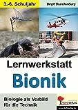 Lernwerkstatt Bionik: Biologie als Vorbild für die Technik - Birgit Brandenburg