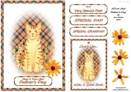 Una targa commemorativa per la festa del papà di jane butler