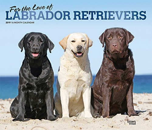 Labrador Retriever - For the love of 2019 - 18-Monatskalender mit freier DogDays-App: Original BrownTrout-Kalender - Deluxe Mehrsprachig Kalender