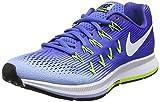 Nike Damen Air Zoom Pegasus 33 Laufschuhe, Grau (Dark...