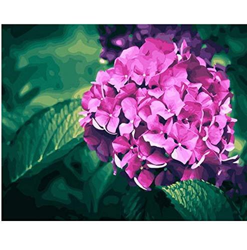 Rahmenlose Bild-Ölgemälde Nach Zahlen Blumen Wand Dekor DIY Malerei Auf Leinwand Lila Hydrangea 16x20 inch - Hydrangea-bilder Lila