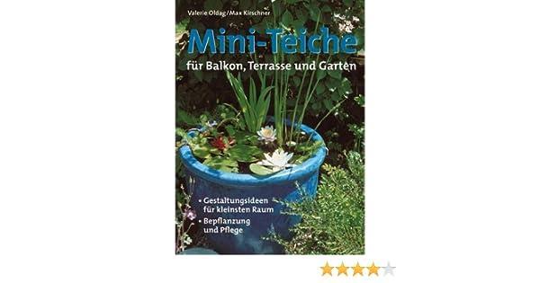 Mini Teiche Für Balkon Terrasse Und Garten Amazonde Valerie