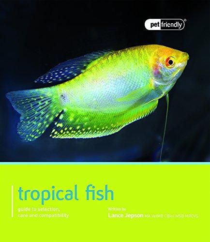 Tropical Fish - Pet Friendly: Pet Friendly - Tropical Fish - Lance Fisch