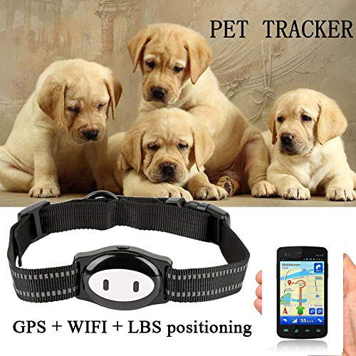 Collar GPS Perros Localizador,Localizador GPS Perros Localizador de Mascotas GPS Gatos Monitor...