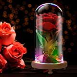 JiaBang Beauty und The Beast rot Velvet Rose Colorful LED-Licht in Glaskuppel – Romantisches Geschenk für Frauen Mädchen | Film Thema kleine Geschenke Hochzeit Dekoration