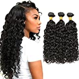 Dai Weier Brazilian Water Wave 3 Bundles 100% Real Remy Virgin Hair Extension Weave Tangle Free Products Grade 10a Generic Cheap 14 16 18 Inches