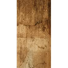 Suchergebnis Auf Amazonde Für Fliesen Holzoptik - Fliesen holzoptik lang