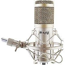 Mugig Micrófono de Condensador Profesional de Estudio - Brazo Soporte de Micrófono para Mesa Ajustable con Abrazadera - Araña Anti-Vibración - Filtro Anti Poping
