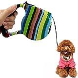 Rrunzfon Hundeleine mit Handgriff – Einknopf-Bremse Lock Pet Leash für Kleine, mittelgroße Hunde und Katzen, Welpen, EIN Knopf Break Lock, reflektierendes Band für Spaziergänge mit Hunden