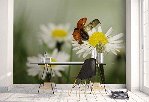 Vlies Fototapete Fotomural - Wandbild - Tapete - Marienkäfer Daisy Blumen Makro - Thema Blumen - XL - 368cm x 254cm (BxH) - 4 Teilig - Gedrückt auf 130gsm Vlies ()