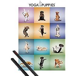 Póster + Soporte: Perros Póster (91x61 cm) Yoga Puppies Y 1 Lote De 2 Varillas Negras 1art1®