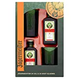 Jagermeister x 2 And 2 Shot Glasses Gift Set