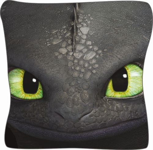 dreamworks-cuscino-con-immagine-dragons-40-x-40-cm