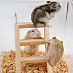 PanDaDa Small Animals Habitat Toy Funny Climbing Ladder Hamster Ladder Stand Wooden Climbing Toy Solid Playing Accessories 14