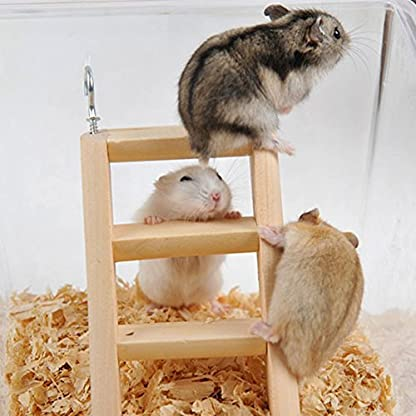 PanDaDa Small Animals Habitat Toy Funny Climbing Ladder Hamster Ladder Stand Wooden Climbing Toy Solid Playing Accessories 6