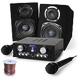 """DJ Set""""Capri Star"""" impianto audio completo PA Karaoke 400 Watt (2 x casse altoparlanti, 1 x amplificatore finale di potenza Skytronic, 2 x microfoni, cavo altoparlanti)"""