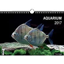 Aquarium 2017 (Wandkalender 2017 DIN A3 quer)