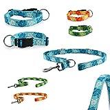 CarlCurt - Fashion Line: Hundehalsband & Hundeleine Im Set, Aus Strapazierfähigem Polyester, S 30-45cm & S 1,90m, Blau