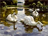 POSTERLOUNGE Canvas print 40 x 30 cm: Swans in Nymphenburg by Alexander Koester/akg-images - ready-to-hang wall picture, stretched on canvas frame, printed image on pure canvas fabric, canvas print