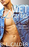 Wet Desires: A gay ABDL story collection (English Edition)
