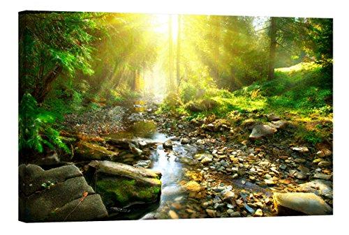 fototapete nachleuchtend Wandbilder Startoshop, nachleuchtende Leinwandbild fertig auf Holzrahme gestreckt, Morgen im Wald Wanddeko, 80 cm x 120 cm