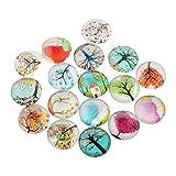 PandaHall-Flor Bedruckte Cabochons aus Glas, Strümpfe rund/Dome, gemischte Farbe, 10 x 4 mm 14x5mm Sandfarben (Albero#1)