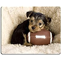 Mousepads Six week old Yorkshire Terrier Puppy posing with a toy football copy space IMAGE ID 8825582 by Liili Customized Mousepads Stain Resistance Collector Kit Kitchen Table Top Desk Drink Customized Stain Resistance Collector Kit Kitchen Table Top