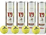 Wilson Tour Practice Tennisball
