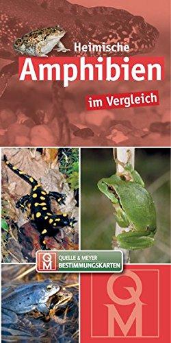 Heimische Amphibien: im Vergleich (Quelle & Meyer Bestimmungskarten)