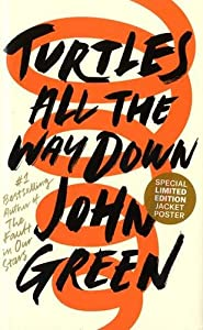 vignette de 'Turtles all the way down (John Green)'