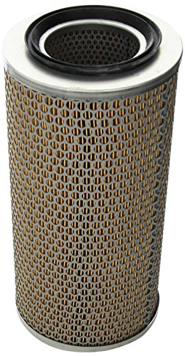 Preisvergleich Produktbild Mann Filter C17250 Luftfilter