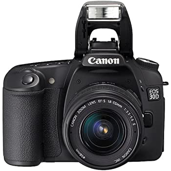 Canon EOS 30D Digital SLR Camera (Body Only)