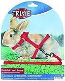 Trixie 6150 Kaninchengeschirr mit Leine, Nylon, 25-44 cm/8 mm, 1,30 m