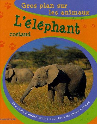 L'éléphant costaud