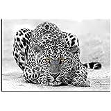 Cadre déco animaux Leopard noir et blanc - TOP VENTE-1A-9028HX2E