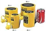 CGOLDENWALL Gato Hidráulico de Botella 10-300 Toneladas Elevador Hidráulico Profesional de Trazo: 50mm & Gran Área Efectiva 15.89-302.5m㎡ (30T)
