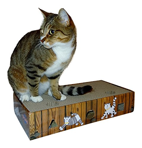 ENVIRONMENTALLY FRIENDLY CAT SCRATCHER & ACTIVITY TOY including CATNIP and TOYS 5