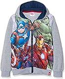 Marvel Avengers Infinite War, Sudadera para Niños, (Dgrey Medium Grey Melange), 4 años