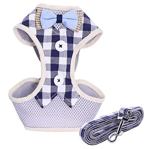 Goodplan 1 Satz Stilvolle Katze Weste Harness mit Bowknot Decor Sicherheitsleine Heimtierbedarf für Kleintiere Im Freien Blau