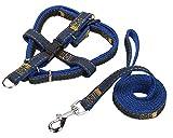 ZhuikunA Hundegeschirr und Leine Set Einstellbare Dauerhaft Stabil Brustgeschirr für Kleine Mittlere und Große Hunde Blau2 M