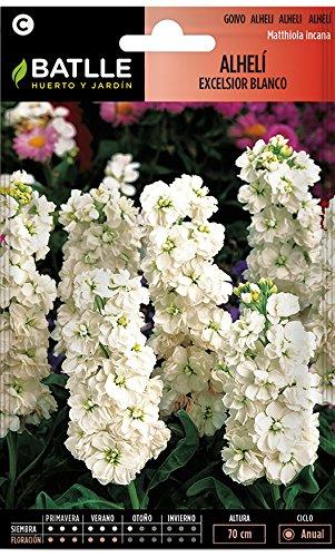 Semillas de Flores - Alhelí Excelsior gigante blanco - Batlle